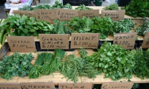 60 Uses of Herbs