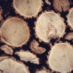57 Uses of Lumber You Probably didn't know