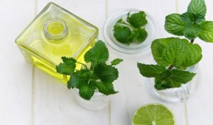 100 Uses of Peppermint Oil