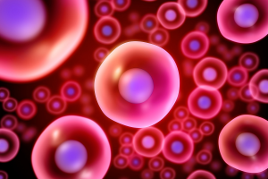 15 uses of stem cells